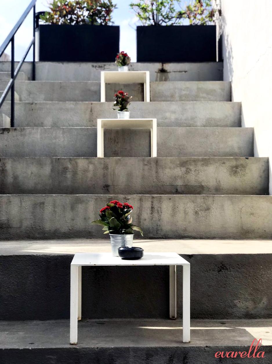 larinascente palermo dachterrasse treppe