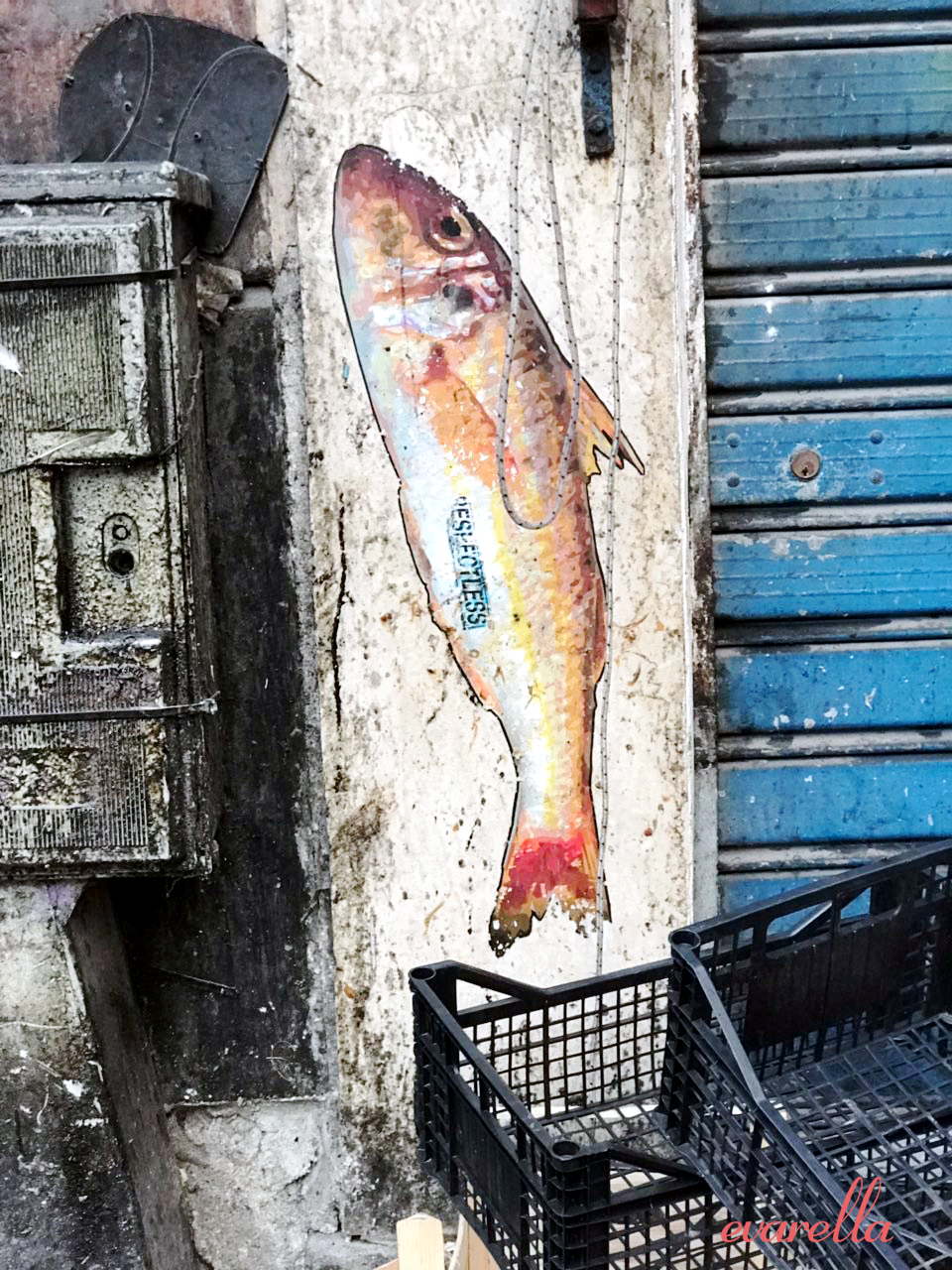streetart palermo vucceria fisch2